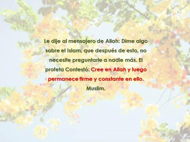 el hadith de sufyan