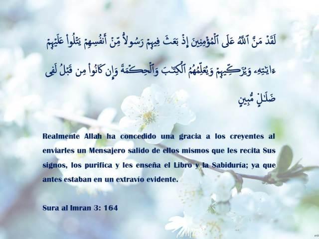 sura al imran 164