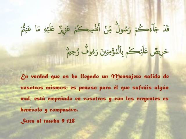 sura al tawba 128