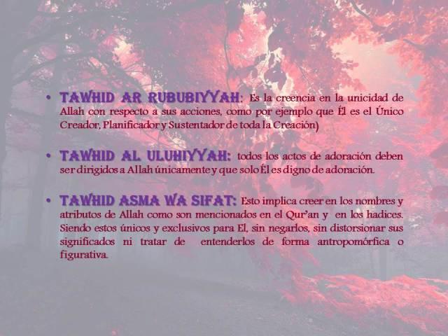 tipos de tawhid