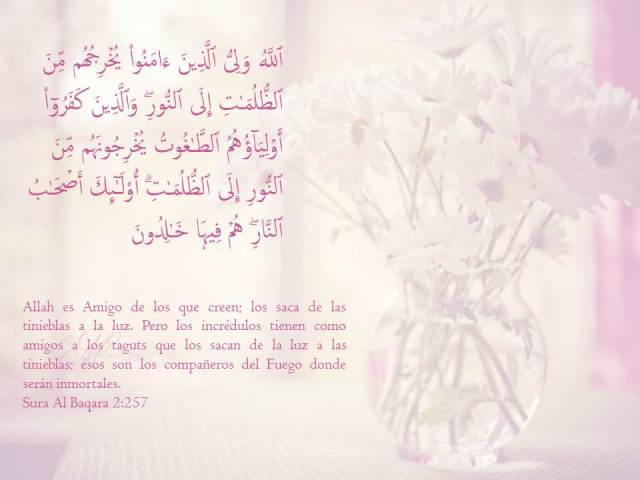 sura al baqara verso 257