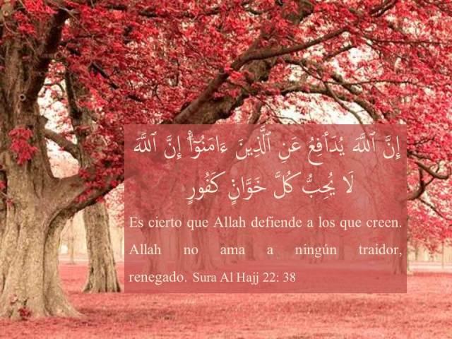 sura al hajj 38