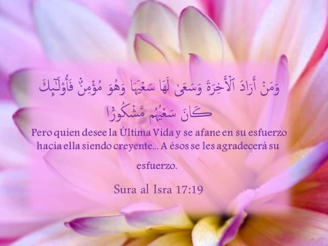 sura al isra 17 19