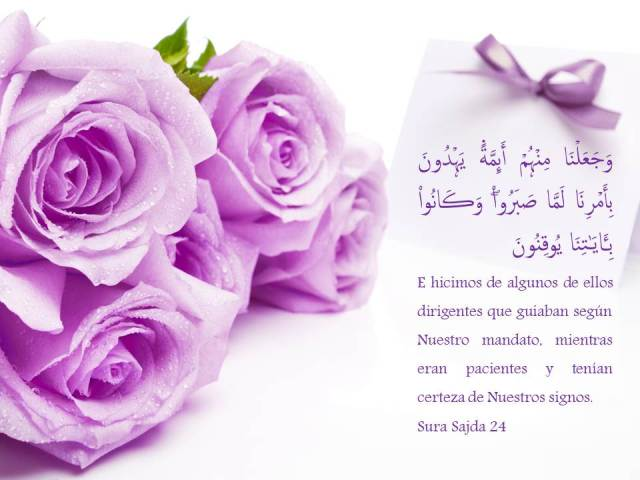 sura sajda 24