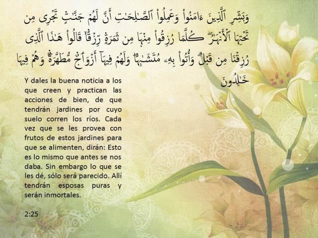 sura al baqara 25