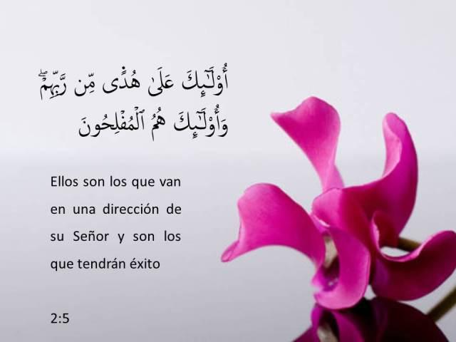 sura al baqara 5