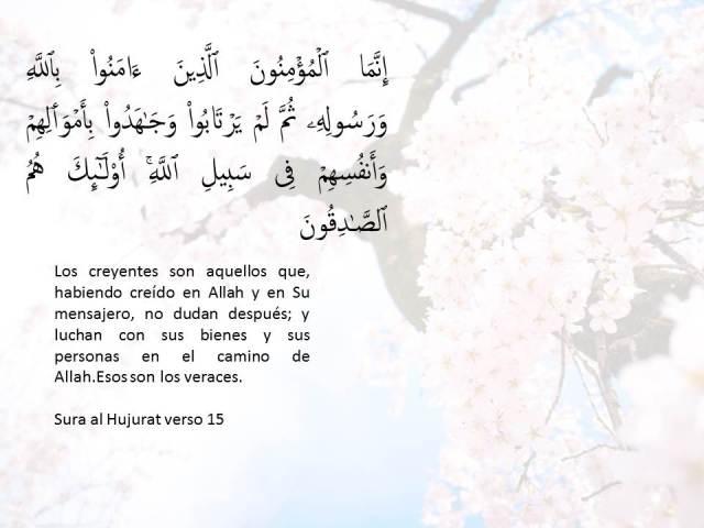 sura al hujurat 15